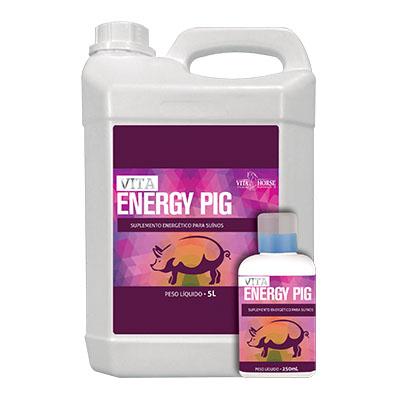 Vita Energy Pig