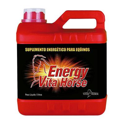 Energy Vita Horse